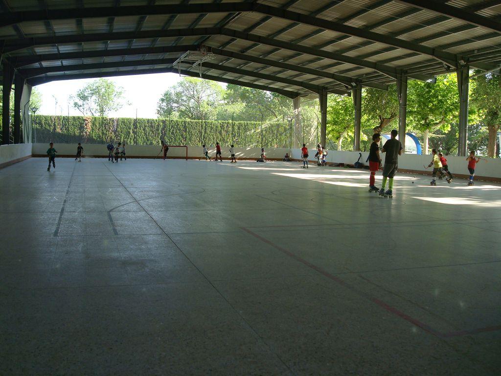FDM-pista patinaje-baloncesto
