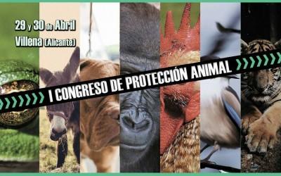 Villena será sede del I Congreso de Protección Animal