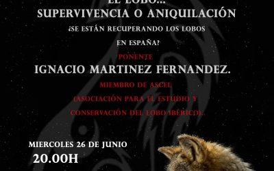 El Ayuntamiento organiza una ponencia tratando la importancia y la situación del lobo en la Península Ibérica