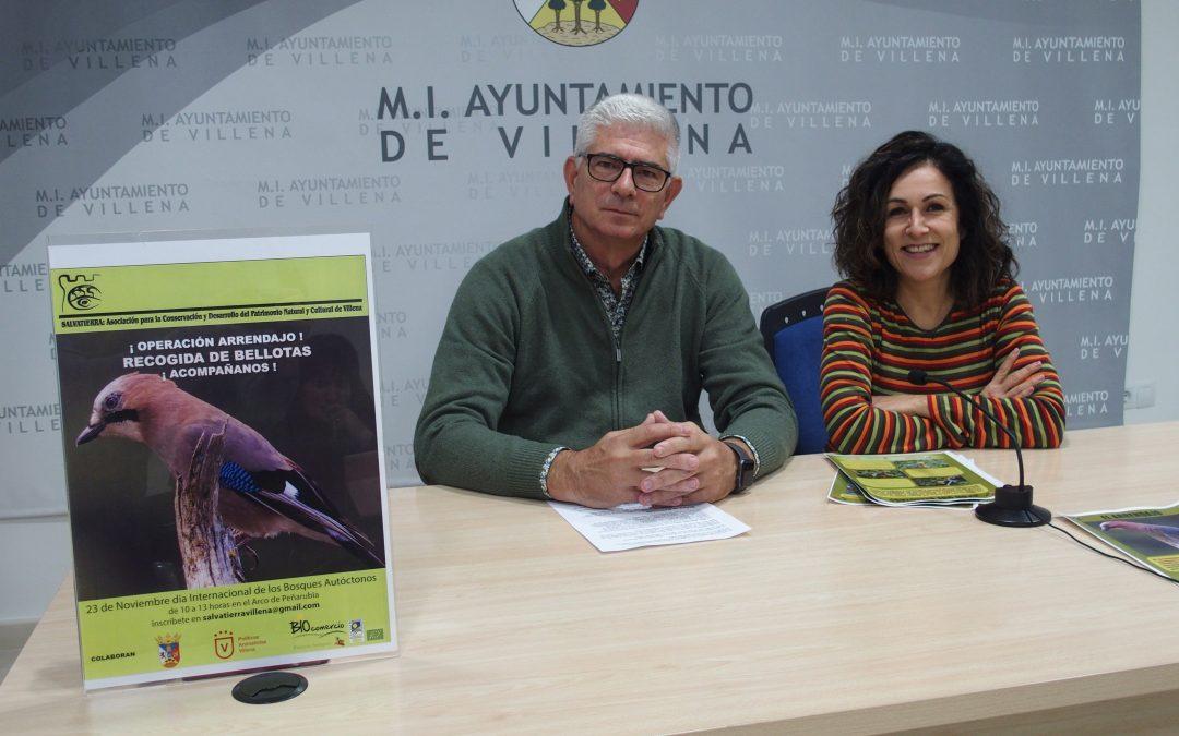 Plantación solidaria de bellotas para repoblar Peña Rubia