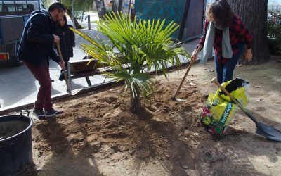 Plantación en el Paseo por el Día del Árbol