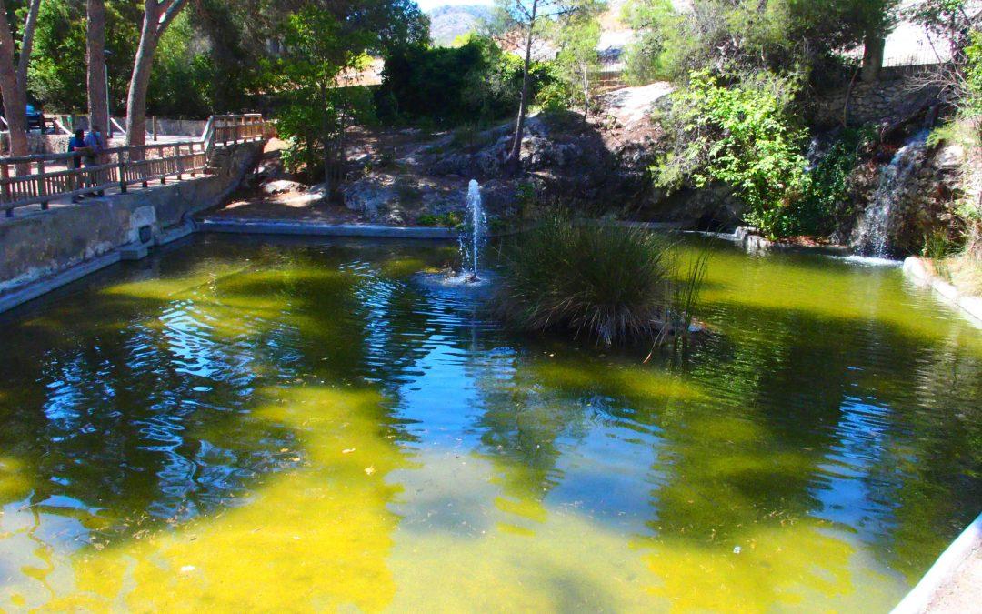 La concejalía de Medio Ambiente denuncia al SEPRONA la aparición de vertidos tóxicos en el Hoyo de Las Virtudes