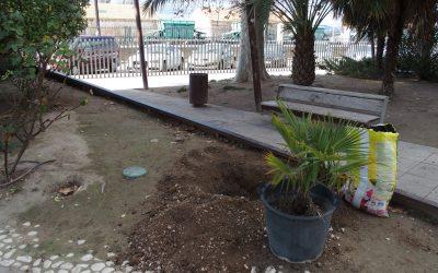 El Ayuntamiento de Villena repoblará las zonas verdes de la ciudad con 820 nuevas plantas